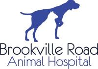 brookville road animal hospital