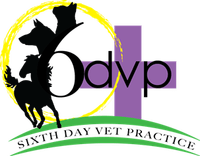 sixth day veterinary practice