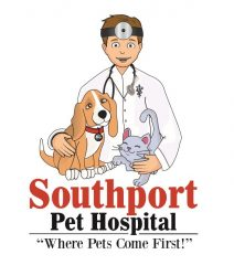 southport pet hospital