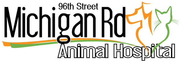 michigan road animal hospital at 96th street