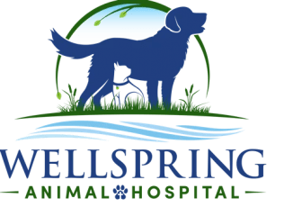wellspring animal hospital