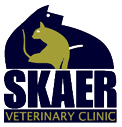skaer veterinary clinic