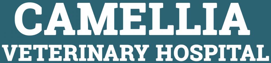 camellia veterinary hospital