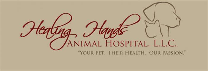 healing hands animal hospital