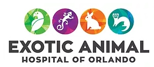 exotic animal hospital of orlando