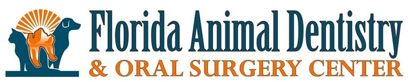 florida animal dentistry