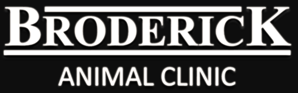 broderick animal clinic