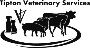 tipton veterinary services