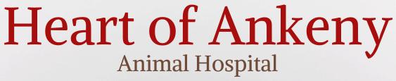 heart of ankeny animal hospital