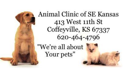animal clinic of s.e. kansas