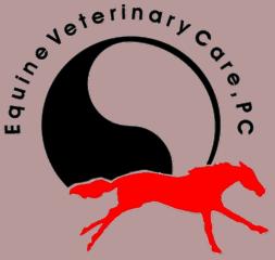 equine veterinary care