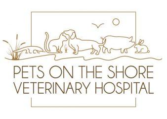 pets on the shore veterinary hospital