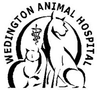 wedington animal hospital