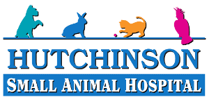 hutchinson small animal hospital