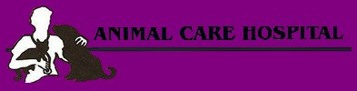 animal care hospital llc