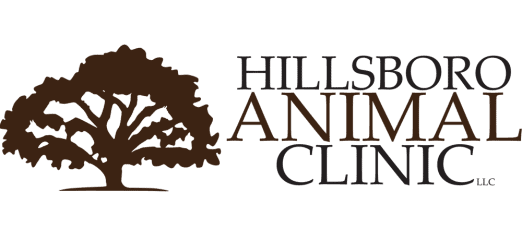 hillsboro animal clinic, llc