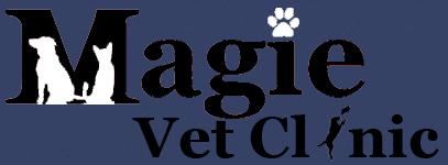 magie veterinary clinic