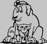 kierland animal clinic