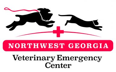 northwest georgia veterinary emergency center