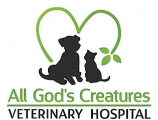 all god's creatures veterinary hospital