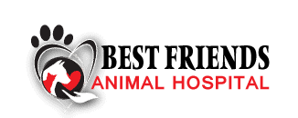 best friends animal hospital dvm