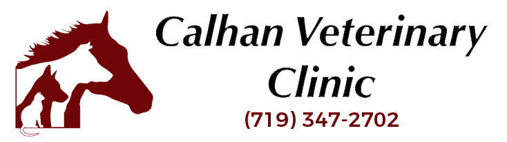 calhan veterinary clinic