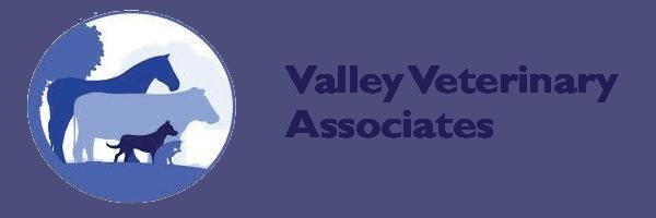 valley veterinary associates