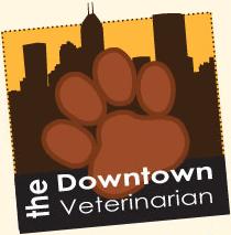 downtown veterinarian