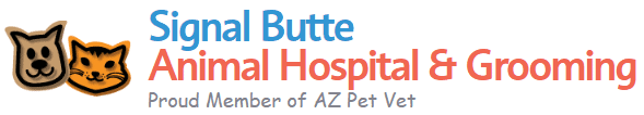signal butte animal hospital & grooming