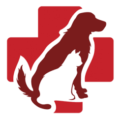 labahn veterinary hospital
