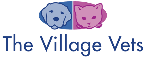 the village vets of stone mountain