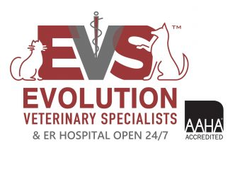 evolution veterinary specialists