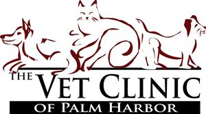 the vet clinic of palm harbor
