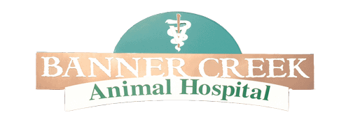 banner creek animal hospital