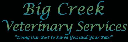 big creek veterinary services