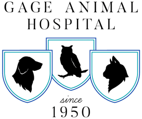 gage animal hospital