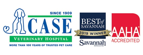 case veterinary hospital