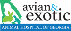 avian and exotic animal hospital of georgia