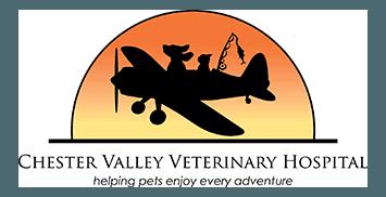 chester valley veterinary hospital