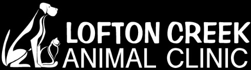 lofton creek animal clinic