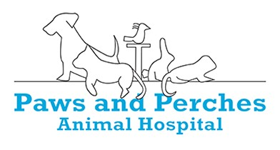 paws and perches animal hospital