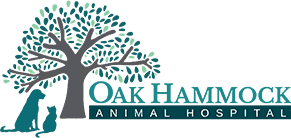oak hammock animal hospital