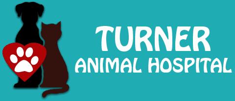 turner animal hospital