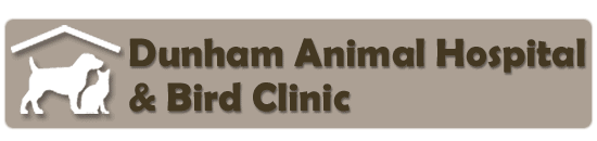 dunham animal hospital