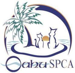 oahu spca veterinary clinic and animal hospital