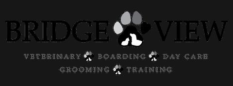 bridgeview veterinary hospital