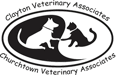 churchtown veterinary associates