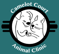 camelot court animal clinic