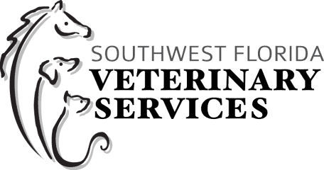 southwest florida veterinary services