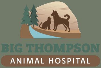 big thompson animal hospital